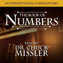Numbers: An Expositional Commentary